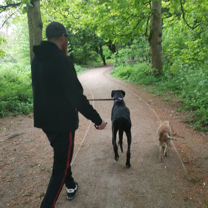 Pet and house sitting job in Westoning, England - House Sitters UK